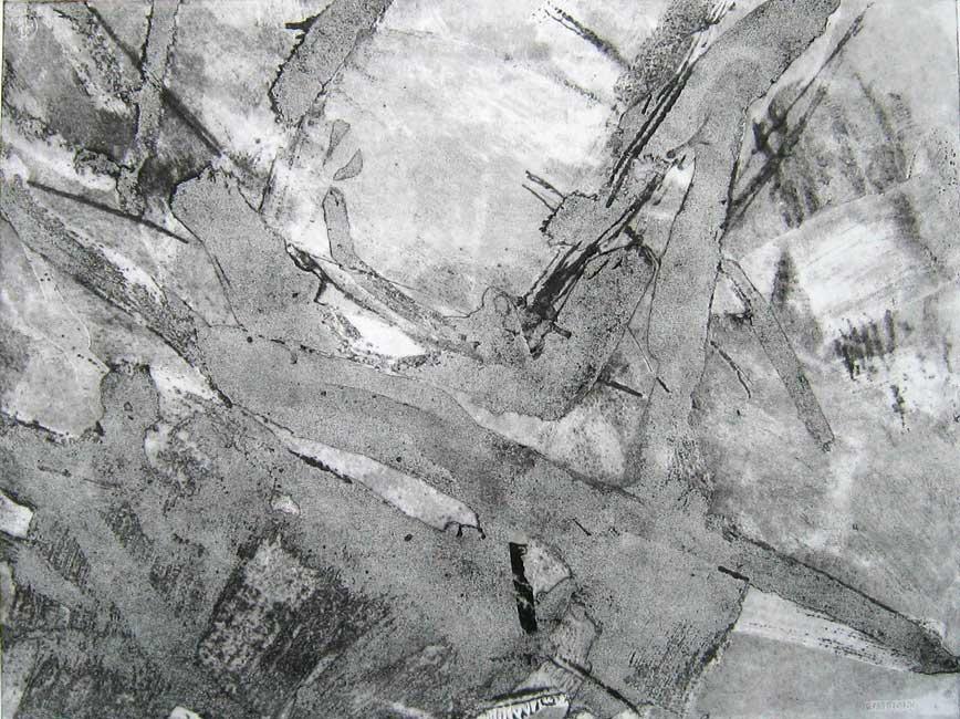 g3 light landscape 178x105cm monoprintcollage on paper